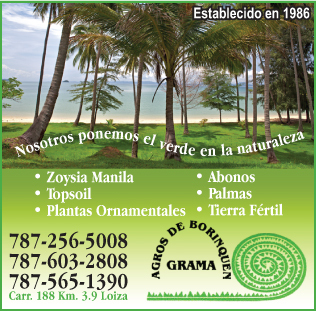 • Gramas de primera calidad (Zoysia Manila) • Top soil • Plantas ornamentales • Servicio de siembra • Fertilizantes • Herbicidas