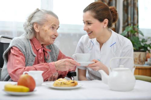 - Médicos - Enfermeras - Asistencia de Salud - Trabajo Social - Capellania - Nutricionista - Terapista - Ama de llaves - Medicamentos - Equipo Médico - Suplido Médico - Suplementos alimenticios