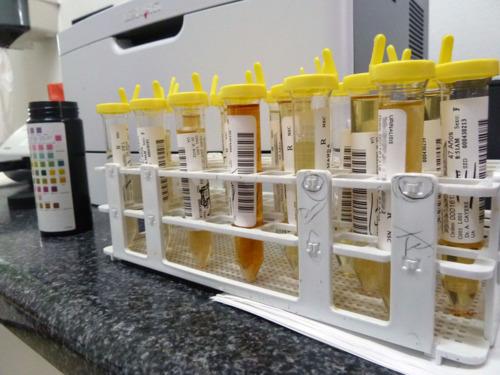 • Pruebas de laboratorio rutinarias • Realizamos pruebas de influenza en 15 minutos • Pruebas para matrimonio, WIC y pruebas de drogas.