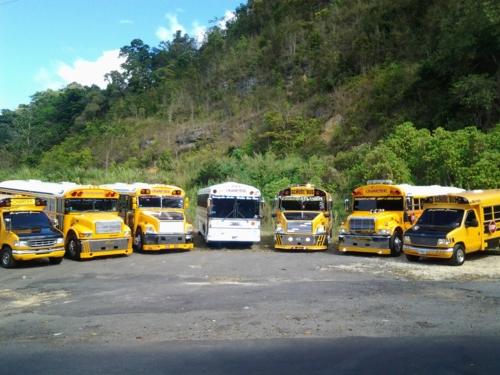 Se ofrecen viajes y excursiones a toda la isla.  Transportación a Colegios, Institutos, Iglesias, Viajes Familiares, Estudiantiles, Convenciones, Conciertos, Chinchorreo, Traslado a Cruceros y Aeropuerto.