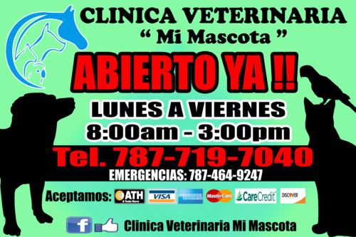 Clínica Veterinaria Mi Mascota
