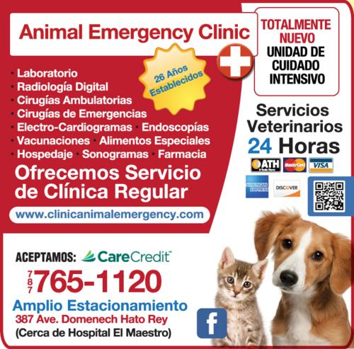 Animal Emergency Clinic