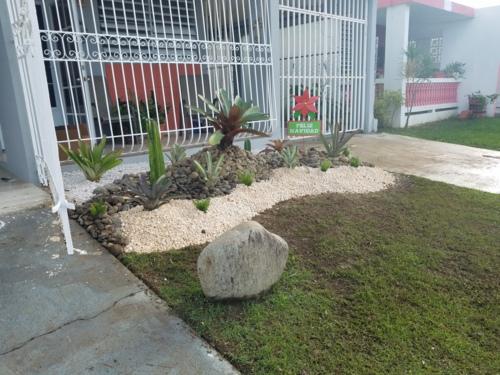 compañía de servicio dedicada al mantenimiento, cuidado y embellecimiento de áreas verdes, jardines y áreas en general.