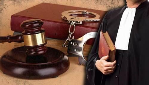 • Casos civiles • Familia • Administrativos • Criminales • Reclamaciones del seguro social • Notaría