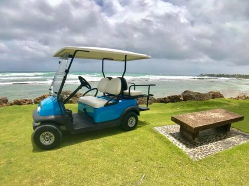 Nuestros servicios incluyen alquiler de carritos de golf, ventas, choferes para actividades especiales, programas de mantenimiento preventivo, servicio y más. ¡Llámanos ahora!