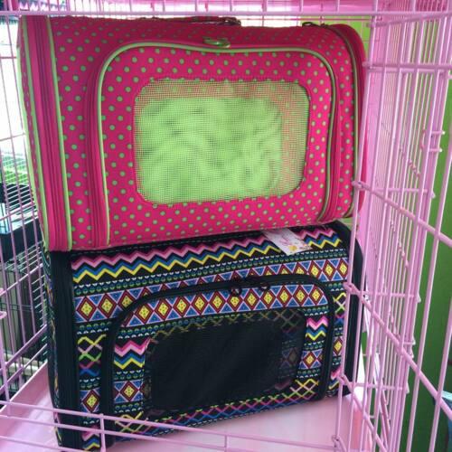 • Grooming • Hospedaje de Mascotas con aire Acondicionado y Servicio de Limpieza • Accesorios para mascotas • Comida • Shampoo • Bandejas de comida