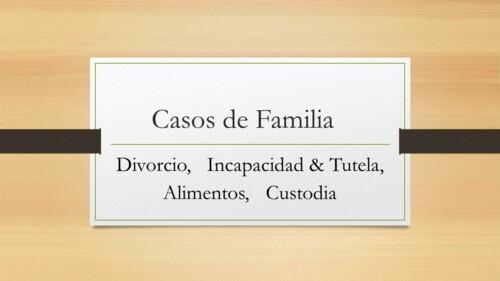• Familia • Divorcio • Custodia •Alimentos • Filiación  •Adopción  •Tutela •Emancipación •Civil •Correcciones/Cambios en el Registro Demográfico •Declaratoria de Herederos •Portación de Armas •Partición de Herencia •Desahucio •Daños y Perjuicios •Cobro de Dinero •Incumplimiento de Contrato • Adveración y Protocolización de testamento Ológrafo •Notarial •Declaraciones Juradas (afidávits) •Capitulaciones Matrimoniales •Divorcio Notarial •Poderes •Hogar Seguro • Testamento abierto •Testamento Vital/directrices anticipadas •Actas •Cancelación de Hipoteca •Compraventa •Acta de edificación •Repudiación de herencia •Criminal •Eliminación de convicciones del certificado de antecedentes penales • Conducir bajo los efectos de bebidas embriagantes •Causa para arresto (regla 6)