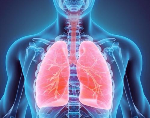 • Pruebas de función pulmonar • Trastornos respiratorios del sueño