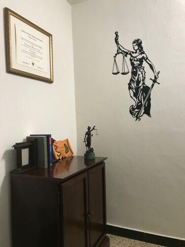 •Certificada para realizar matrimonios y divorcios en su cede notarial. •Casos de Familia •Herencias •Hogar Seguro •Derecho de Familia •Derecho consumidores •Daños y Perjuicios •Notaria en General •Portación de Armas  •Testamentos