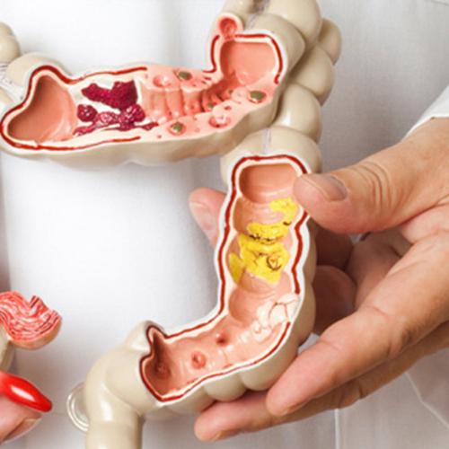 • Médicos Especialistas en gastrología, endoscopias, colonoscopia • Tel adicional: (787) 740-4747 Ext. 1866