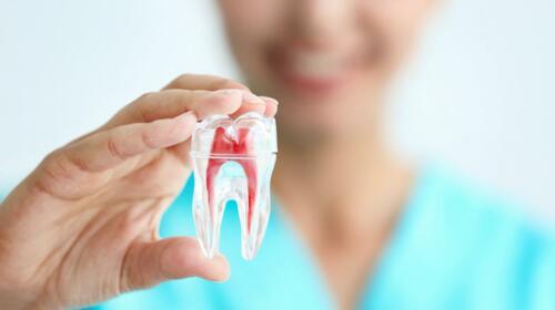 • Implantes dentales • Blanqueamiento profesional • Laminados de porcelana • Restauraciones blancas