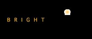 Bright Point