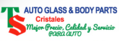 TS Auto Glass & Body Parts