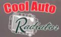 Cool Auto Radiator