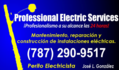 Professional Electric Services