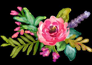 Floristeria El Tulipan